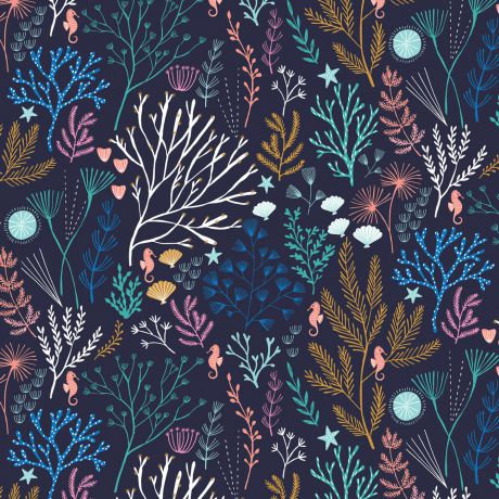 Dashwood - Into the Blue