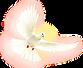 FF-dove-web.png