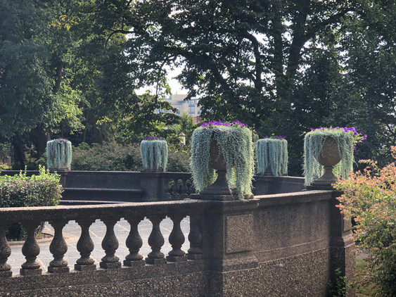flower pots foth.jpg