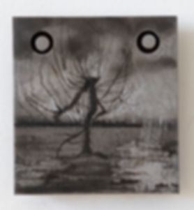 orchard2IMG_3142.jpg
