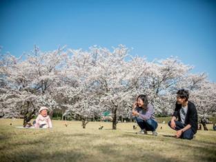 公園で赤ちゃん写真を撮る前に