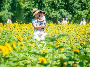 子どもと家族の写真(広島県世羅町)