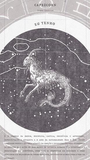 Capricornio /  Serie Zodiaco