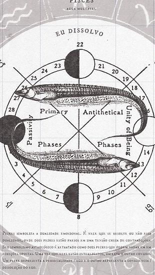 Pisces /  Serie Zodiaco
