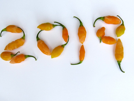 10 Easy Ways to Incorporate Minorcan Mike's Datil Pepper Sauce into your Life in 2019