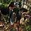 Thumbnail: GARMIN Alpha® 200i/TT™ 15 Dog Tracking Bundle