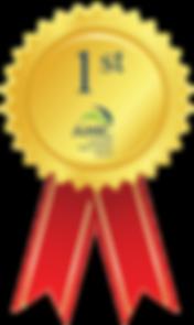 AMIC Awards Gold