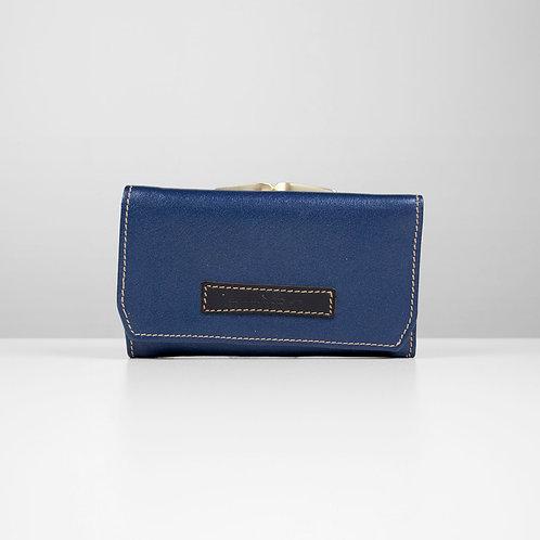 Blue petite purse