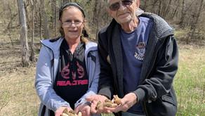In Nebraska, Families Come Together to Hunt for Morel Mushrooms
