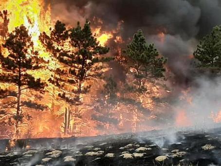 Western Nebraska Wildfires Affect Hunting Season