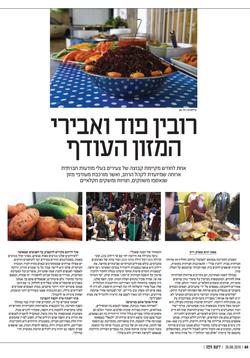 עיתון ידיעות חיפה/ יורם מארק רייך