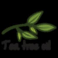 tea tree oil.png