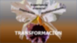 matizart_experiencia_vivencial