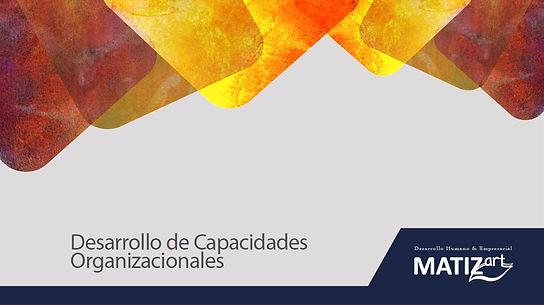 matizart_desarrollo_de_capacidades_organizacionales