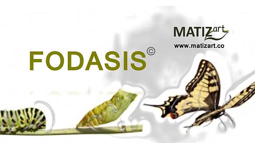 MATIZart FODASIS.png