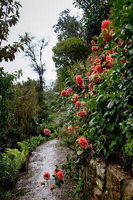 12. Metanoia S1. Los jardines del conoci