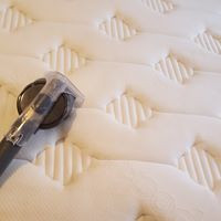 Why Should I Have my Mattress Cleaned?