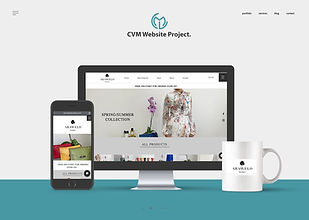 CVM Website Portfolio2.jpg
