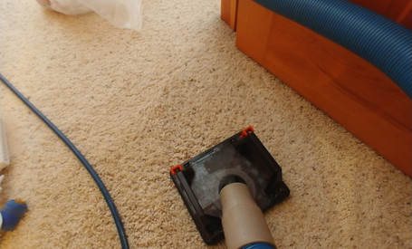 Blood Stain Removal in Northville, MI