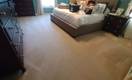 Pet Friendly Carpet Cleaning Services In Commerce, MI