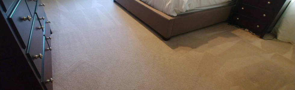 Pet Friendly Carpet Cleaning Services In Milford, MI