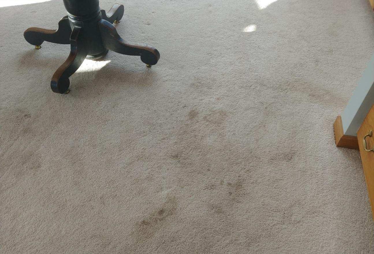 Carpet Cleaning in Lyon Township, MI