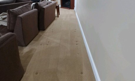Residential Carpet Cleaning in Farmington Hills,