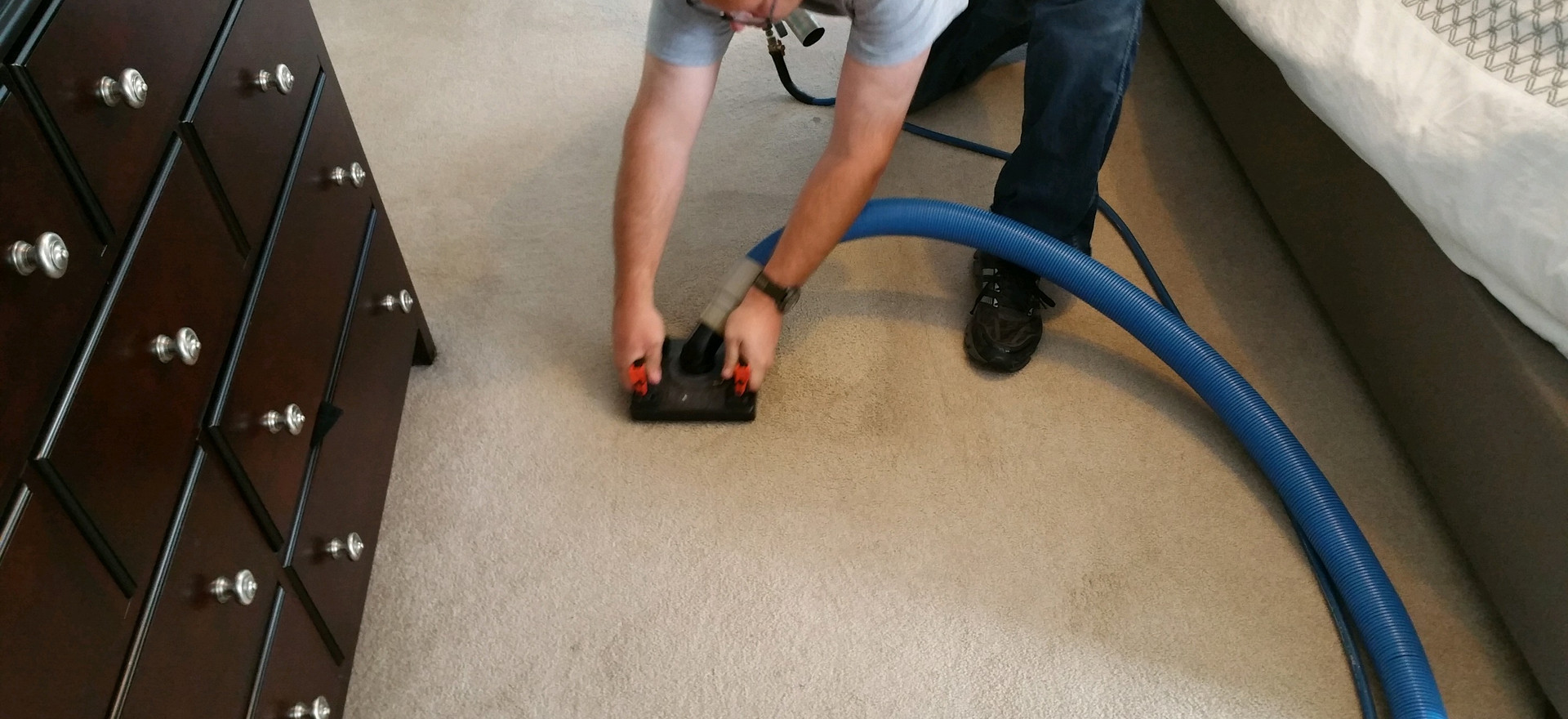 Pet Stain & Odor Removal Commerce Michigan