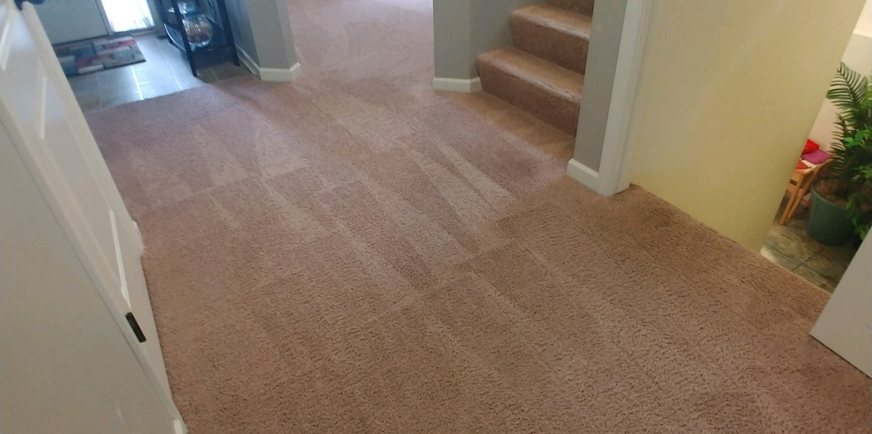 Carpet Cleaning Services In West Bloomfield, MI