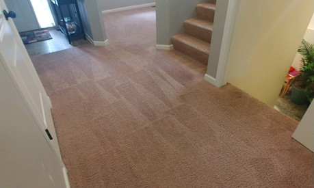 Carpet Cleaning Services In Farmington Hills, MI