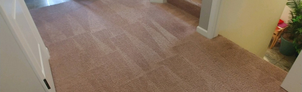 Carpet Cleaning Services In Milford, MI