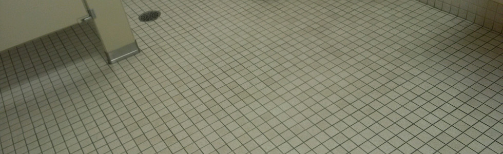 Bathroom Tile Cleaning in Wixom Michigan
