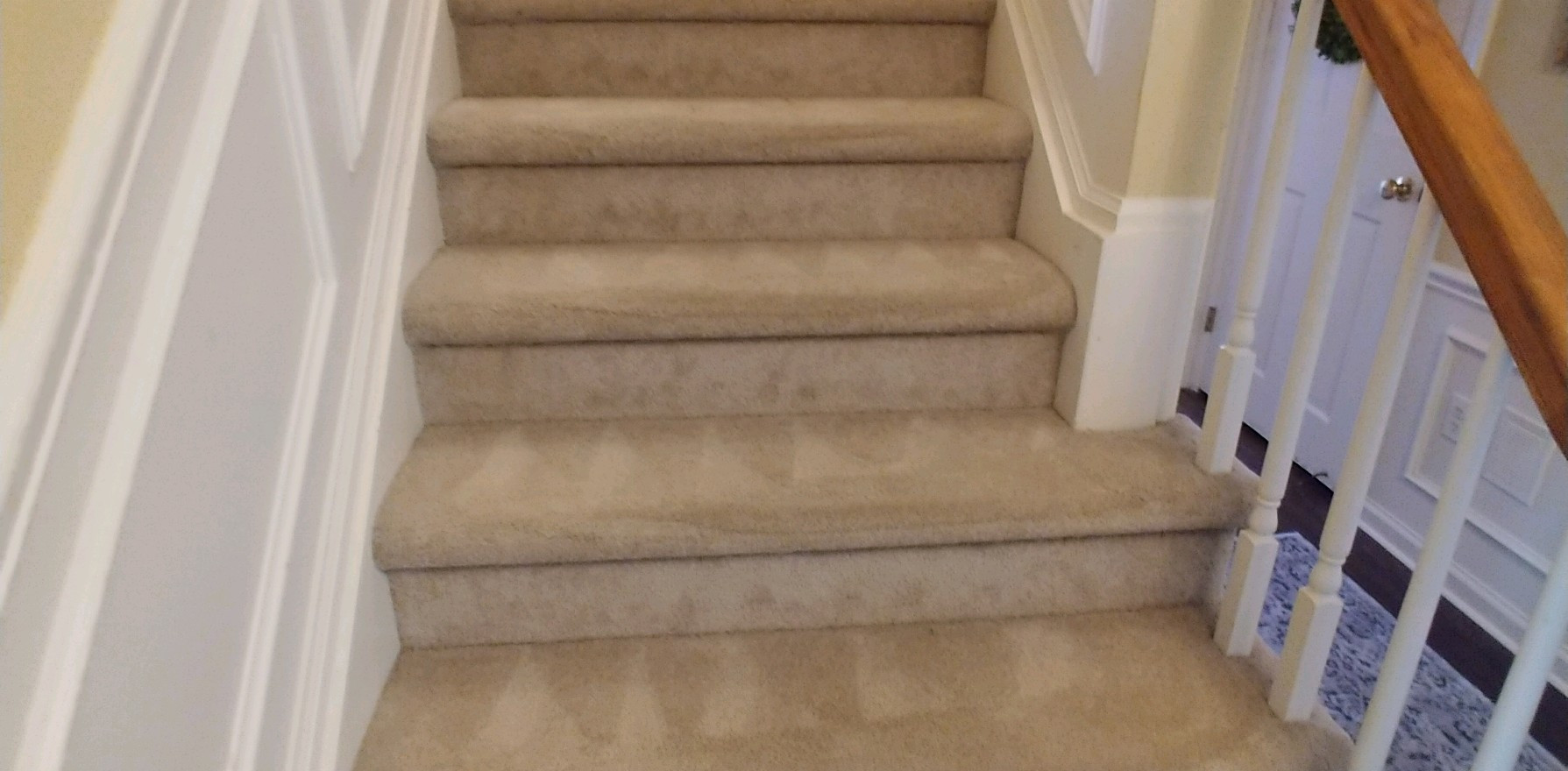 Steam Cleaned Stairs In West Bloomfield Michigan