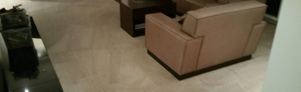 Carpet & Upholstery Cleaning in Milford Michigan