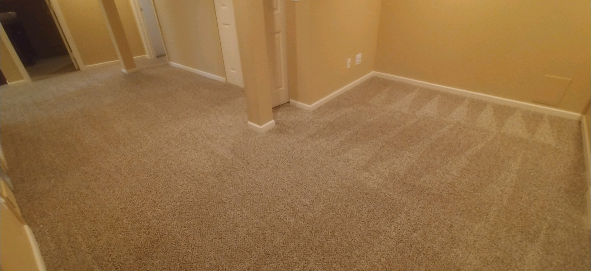 Carpet Cleaning In Commerce Michigan