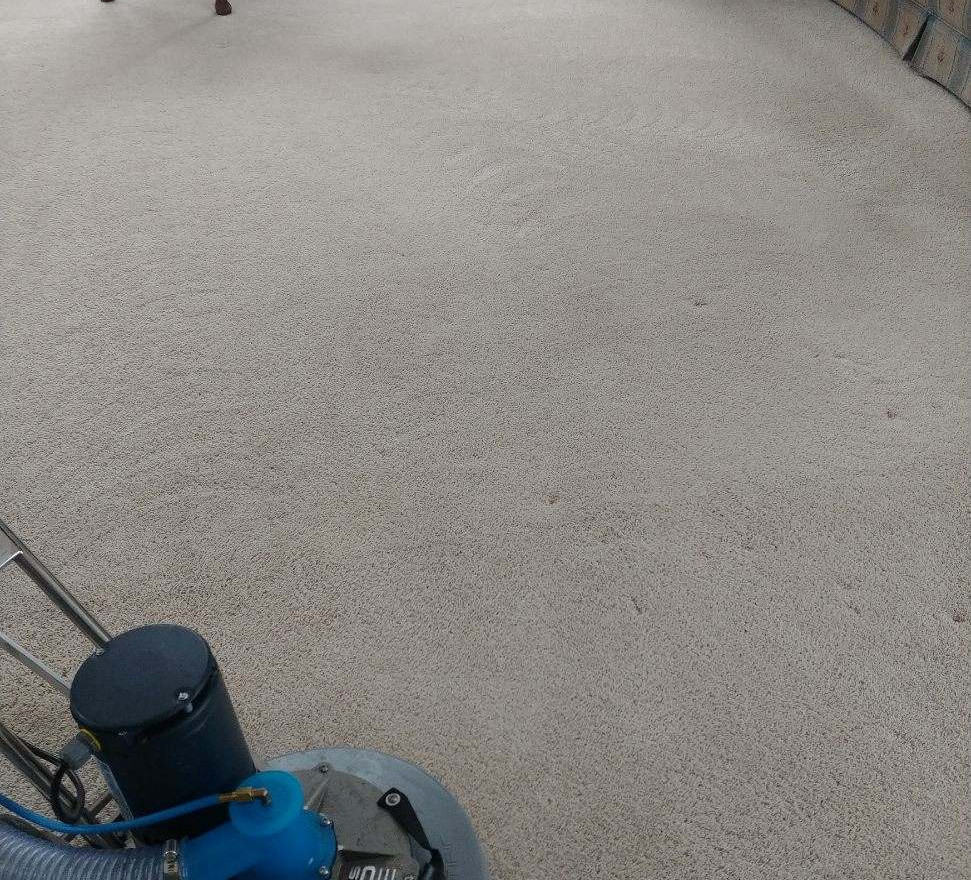 Carpet Cleaning in Bloomfield Hills, MI
