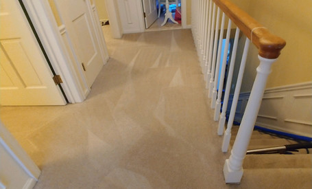 Professional Carpet Cleaning In Commerce Michigan