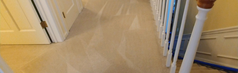 Professional Carpet Cleaning In Milford Michigan