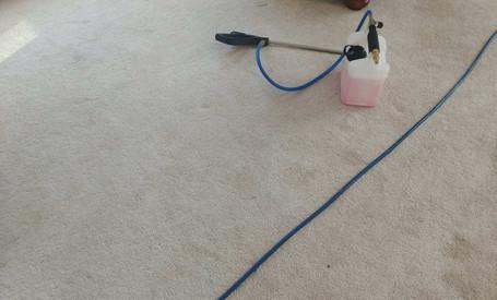 Carpet Cleaning in Novi, MI