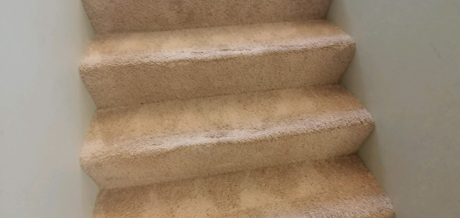West Bloomfield Carpet Cleaning Services