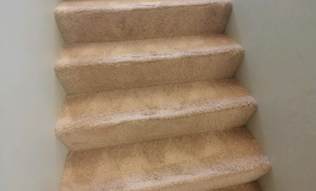 Commerce Township Carpet Cleaning Services