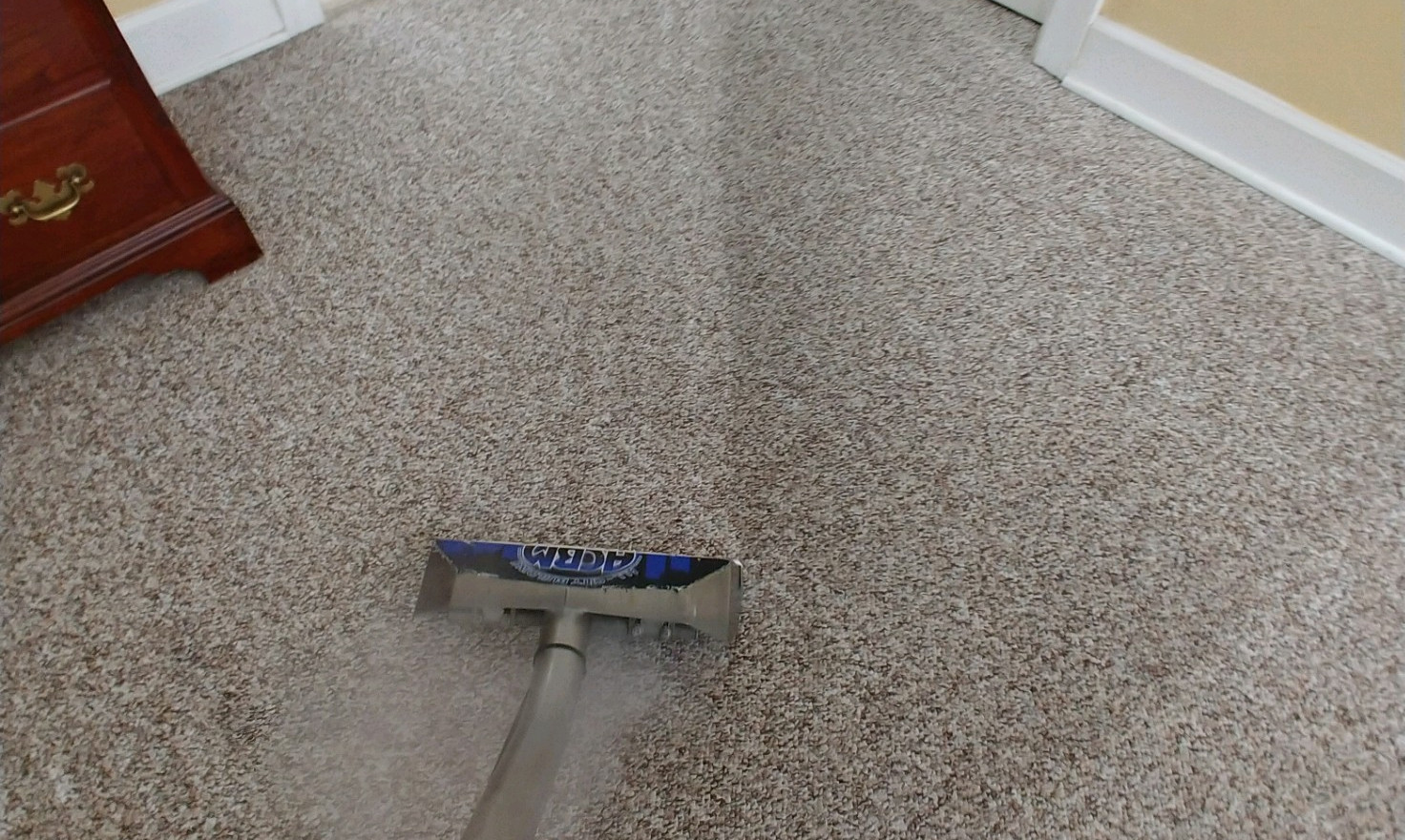 Scotchgard 3M Carpet Protection In Commerce, MI