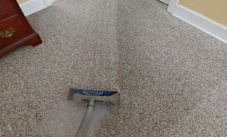 Scotchgard 3M Carpet Protection In Commerce, MI
