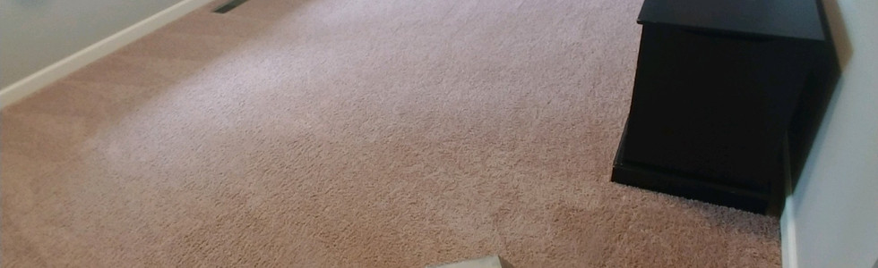 Eco-Friendly Carpet Cleaning In Milford Michigan