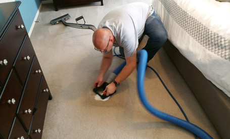 Pet Stain Removal in Commerce Michigan