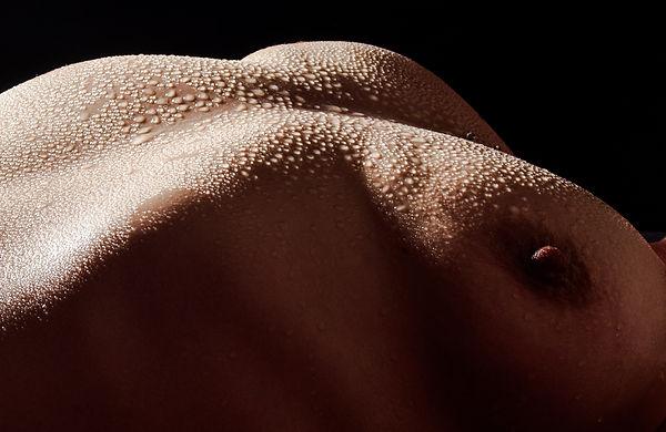 body (8).jpg