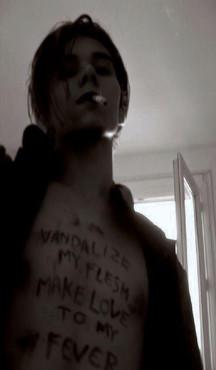 vandalize my flesh make love to my fever