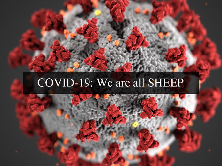 COVID-19: We are all SHEEP