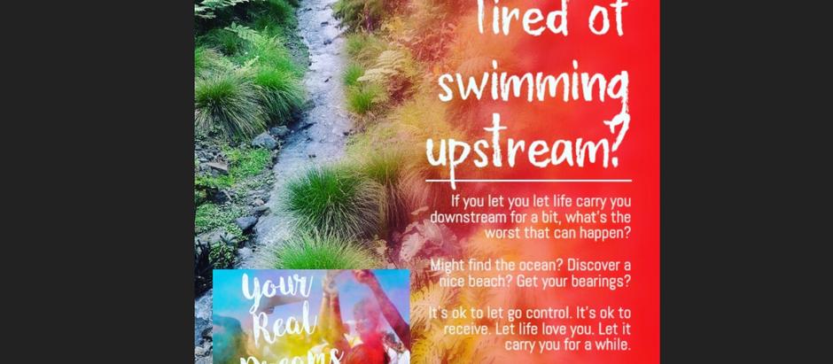 Tired of swimming upstream?