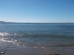 Nye Beach Ocean